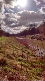 Sunny River Roding
